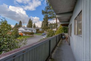 Photo 21: 3384 CARDINAL Drive in Burnaby: Government Road House for sale (Burnaby North)  : MLS®# R2037916