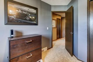 Photo 20: 10 Jensen Heights Place NE: Airdrie Detached for sale : MLS®# A1091171