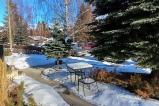 Photo 39: 23 Braden Crescent NW in Calgary: Brentwood Detached for sale : MLS®# A1073272