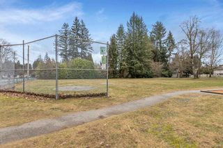 Photo 38: 12169 218 Street in Maple Ridge: West Central House for sale : MLS®# R2541686