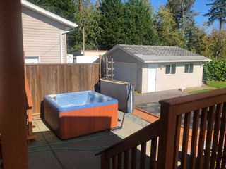 Photo 10: 6256 264 Street in Langley: County Line Glen Valley House for sale : MLS®# R2502458