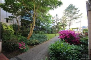 Photo 10: 226 3225 Eldon Pl in VICTORIA: SW Rudd Park Condo for sale (Saanich West)  : MLS®# 799568