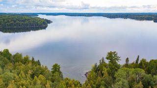 Photo 11: Lot 19 Five Point Island in South of Kenora: Vacant Land for sale : MLS®# TB212087