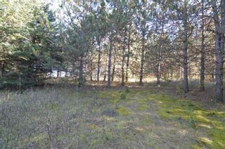 Photo 14: 221 Old Percy Road in Cramahe: Castleton Property for sale : MLS®# X5398941