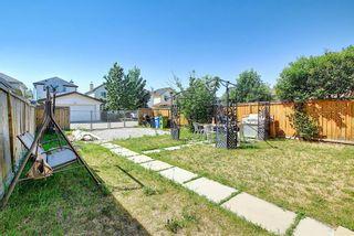 Photo 44: 327 Taravista Street NE in Calgary: Taradale Detached for sale : MLS®# A1125170