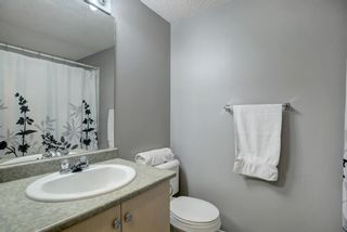 Photo 17: 144 1717 60 Street SE in Calgary: Red Carpet Apartment for sale : MLS®# A1131300