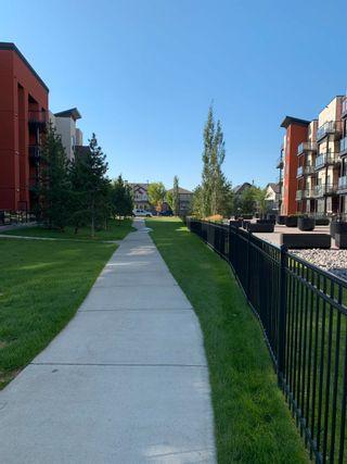 Photo 32: 243 308 AMBLESIDE Link in Edmonton: Zone 56 Condo for sale : MLS®# E4260650