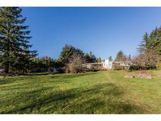Photo 3: 16910 23RD Avenue in Surrey: Pacific Douglas House for sale (South Surrey White Rock)  : MLS®# R2136702