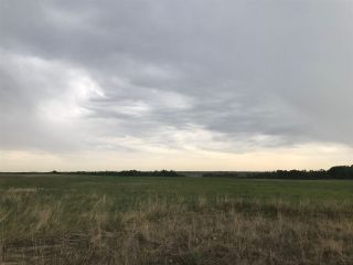 Photo 8: TWP 580 Rg Rd 240 Sturgeon County: Rural Sturgeon County Rural Land/Vacant Lot for sale : MLS®# E4248027