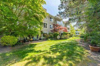 """Photo 24: 106 1369 GEORGE Street: White Rock Condo for sale in """"CAMEO TERRACE"""" (South Surrey White Rock)  : MLS®# R2579330"""
