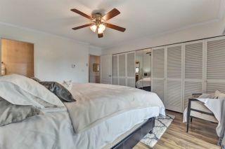 "Photo 24: 21331 DOUGLAS Avenue in Maple Ridge: West Central House for sale in ""West Maple Ridge"" : MLS®# R2576360"