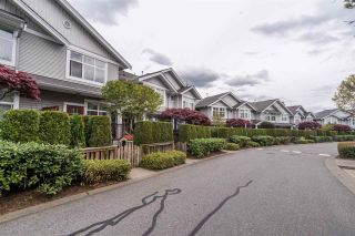 """Photo 3: 79 20449 66 Avenue in Langley: Willoughby Heights Townhouse for sale in """"Natures Landing"""" : MLS®# R2573533"""