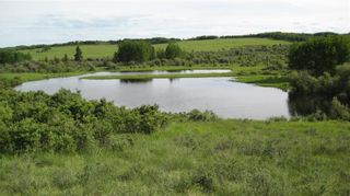 Photo 3: TWP RD 272 & RR 41 in Rural Rocky View County: Rural Rocky View MD Residential Land for sale : MLS®# A1127957