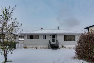 Photo 31: 33 Moncton Road NE in Calgary: Winston Heights/Mountview Detached for sale : MLS®# A1044576