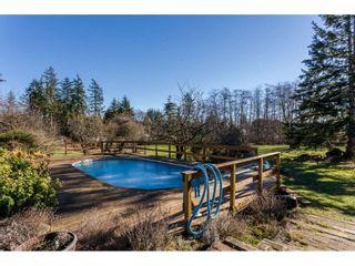 Photo 12: 16910 23RD Avenue in Surrey: Pacific Douglas House for sale (South Surrey White Rock)  : MLS®# R2136702
