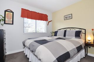 Photo 14: 115 N HOLDOM Avenue in Burnaby: Capitol Hill BN House for sale (Burnaby North)  : MLS®# R2152948