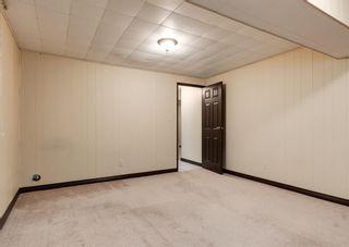 Photo 32: 11039 166 Avenue: Edmonton Detached for sale : MLS®# A1083224