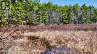 Photo 9: Lot Labelle Road in Labelle: Vacant Land for sale : MLS®# 202108302
