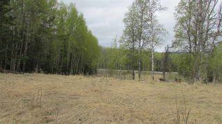 "Photo 4: PRCL A BERYL PRAIRIE Road: Hudsons Hope Land for sale in ""BERYL PRAIRIE"" (Fort St. John (Zone 60))  : MLS®# R2455504"