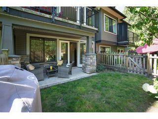 "Photo 20: 7 23709 111A Avenue in Maple Ridge: Cottonwood MR Townhouse for sale in ""FALCON HILLS"" : MLS®# R2192590"