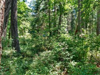 Photo 5: 20 Pirate Pl in : Isl Protection Island Land for sale (Islands)  : MLS®# 878593