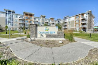 Main Photo: 1108 302 Skyview Ranch Drive NE in Calgary: Skyview Ranch Apartment for sale : MLS®# A1132401