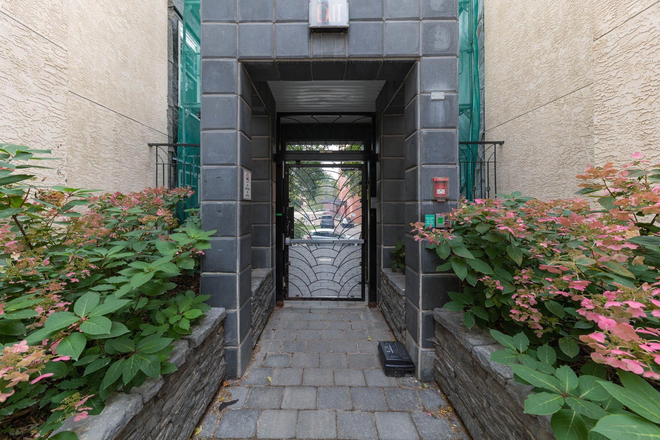 Main Photo: 308 9828 112 Street in Edmonton: Zone 12 Condo for sale : MLS®# E4263767