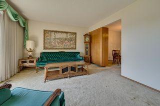 Photo 7: 7228 131A Avenue in Edmonton: Zone 02 House for sale : MLS®# E4252234