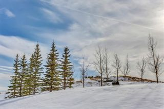 Photo 44:  in Calgary: Sherwood House for sale : MLS®# C4167078