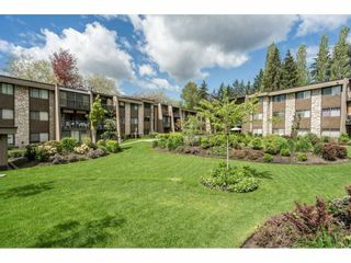 """Photo 1: 104 9101 HORNE Street in Burnaby: Government Road Condo for sale in """"WOODSTONE PLACE"""" (Burnaby North)  : MLS®# R2576673"""