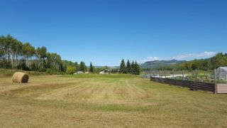 """Photo 20: 7255 WOODMERE Road in Smithers: Smithers - Rural Manufactured Home for sale in """"WOODMERE"""" (Smithers And Area (Zone 54))  : MLS®# R2438178"""