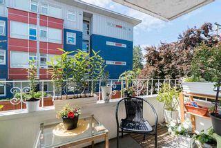"""Photo 17: 202 12096 222 Street in Maple Ridge: West Central Condo for sale in """"CANUCK PLAZA"""" : MLS®# R2591057"""