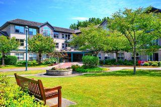 Photo 1: 103 1485 Garnet Rd in Saanich: SE Cedar Hill Condo for sale (Saanich East)  : MLS®# 839181
