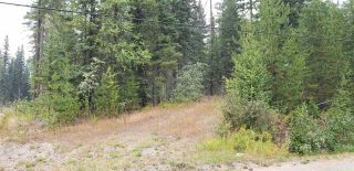 Photo 12: LOT 5 TAPPING Road: Cluculz Lake Land for sale (PG Rural West (Zone 77))  : MLS®# R2354485