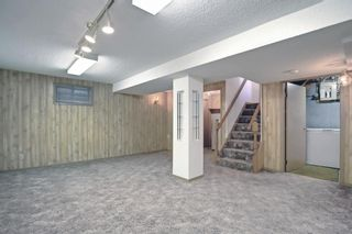 Photo 19: 2618 46 Street SE in Calgary: Forest Lawn Detached for sale : MLS®# A1146875