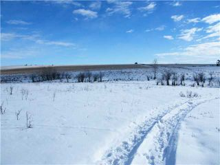 Photo 6: : Rural Mountain View County Rural Land for sale : MLS®# C3653320