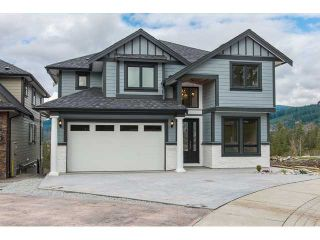 """Photo 49: 22699 136A Avenue in Maple Ridge: Silver Valley House for sale in """"FORMOSA PLATEAU"""" : MLS®# V1053409"""