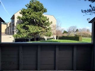 """Photo 12: 210 8140 COLONIAL Drive in Richmond: Boyd Park Townhouse for sale in """"C4"""" : MLS®# R2560004"""