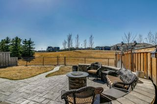 Photo 45: 40 Masters Landing SE in Calgary: Mahogany Detached for sale : MLS®# A1100414