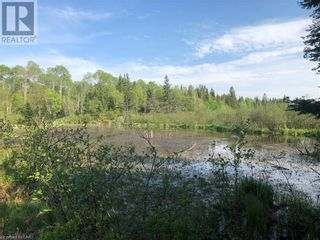 Photo 20: N/A RANEY Road E in Sundridge: Vacant Land for sale : MLS®# 40129602