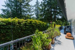 """Photo 10: 6825 HYCROFT Road in West Vancouver: Whytecliff House for sale in """"Whytecliff"""" : MLS®# R2604237"""