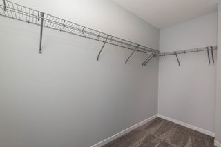 Photo 19: 22334 92A Avenue in Edmonton: Zone 58 House for sale : MLS®# E4247634