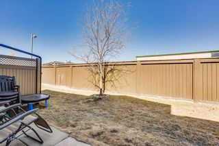 Photo 19: 2 102 Canoe Square SW: Airdrie Row/Townhouse for sale : MLS®# A1096598