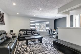 Photo 10: 1027 Penrith Crescent SE in Calgary: Penbrooke Meadows Detached for sale : MLS®# A1104837