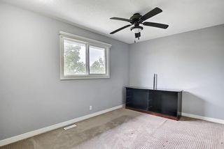 Photo 27: 23 Castlefall Way NE in Calgary: Castleridge Detached for sale : MLS®# A1141276