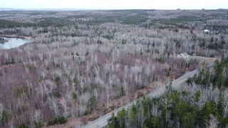 Photo 8: Lot 4 Powell Road in Little Harbour: 108-Rural Pictou County Vacant Land for sale (Northern Region)  : MLS®# 202106883