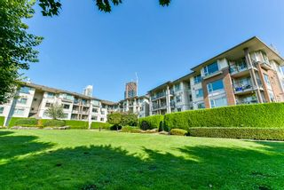 """Photo 20: 306 4728 DAWSON Street in Burnaby: Brentwood Park Condo for sale in """"MONTAGE"""" (Burnaby North)  : MLS®# R2300528"""