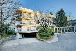 "Photo 29: 202 12206 224 Street in Maple Ridge: East Central Condo for sale in ""COTTONWOOD"" : MLS®# R2422789"