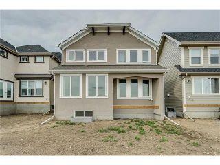 Photo 36: 11 MAHOGANY Park SE in Calgary: Mahogany House for sale : MLS®# C4111674