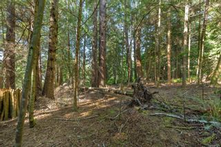 Photo 33: LOT 9 West Coast Rd in : Sk West Coast Rd Land for sale (Sooke)  : MLS®# 876669